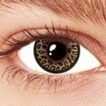 Leopard Brown Contact Lenses