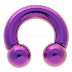 Titanium Large Gauge Circular Barbell - Purple