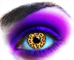 Leopard Cat Lenses
