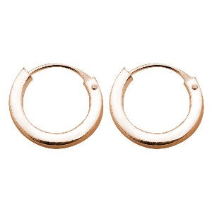 Silver Rose Gold Hoop Earrings