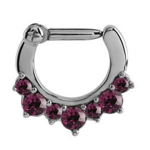 Surgical Steel Jewelled Hinged Clicker Ring - Purple