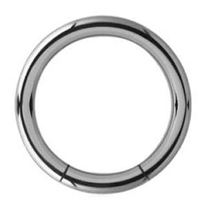 Titanium Smooth Segment Rings - 2.0mm